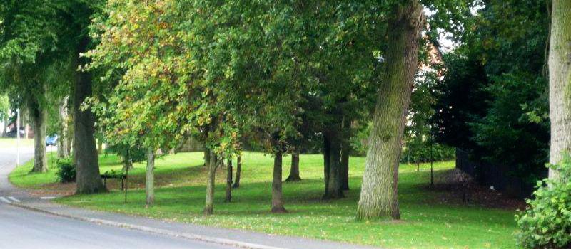 Cumwhinton Drive Parklands